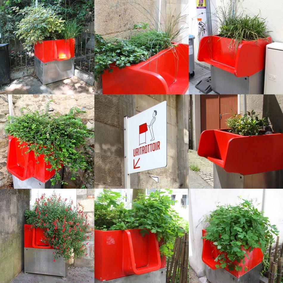 Collage d'Uritrottoirs rouges avec végétation.