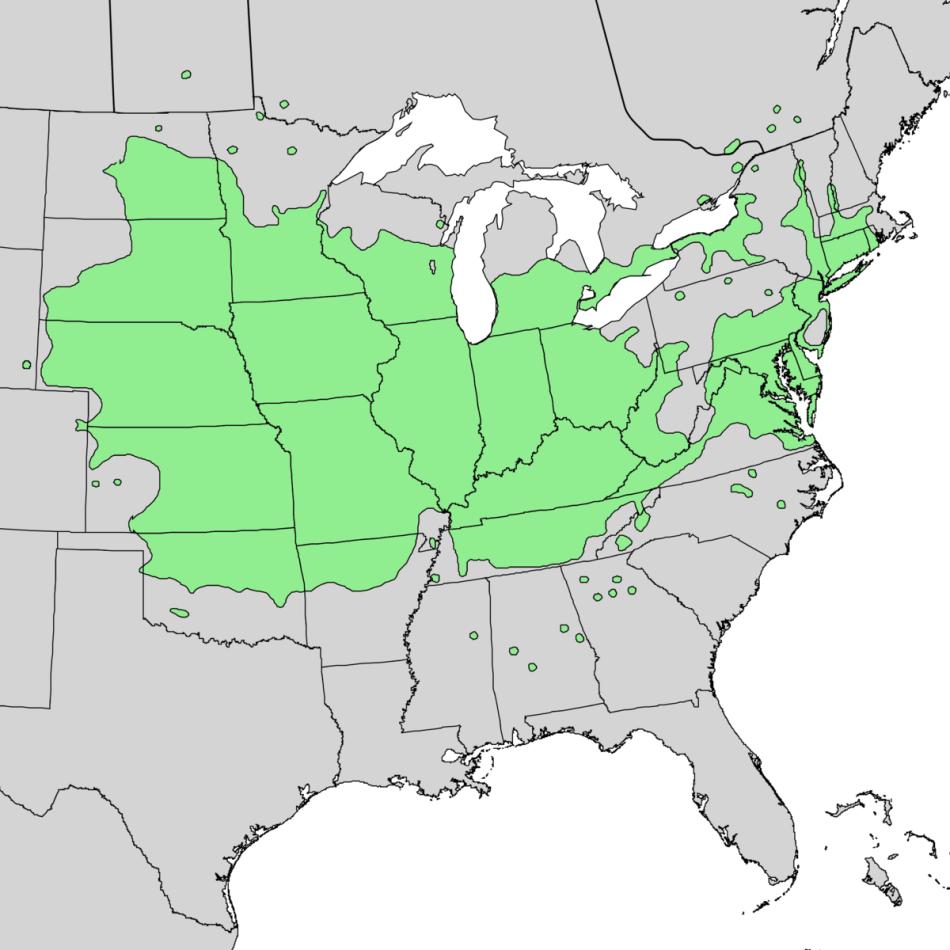 Carte montrant la distribution naturelle du micocoulier occidental