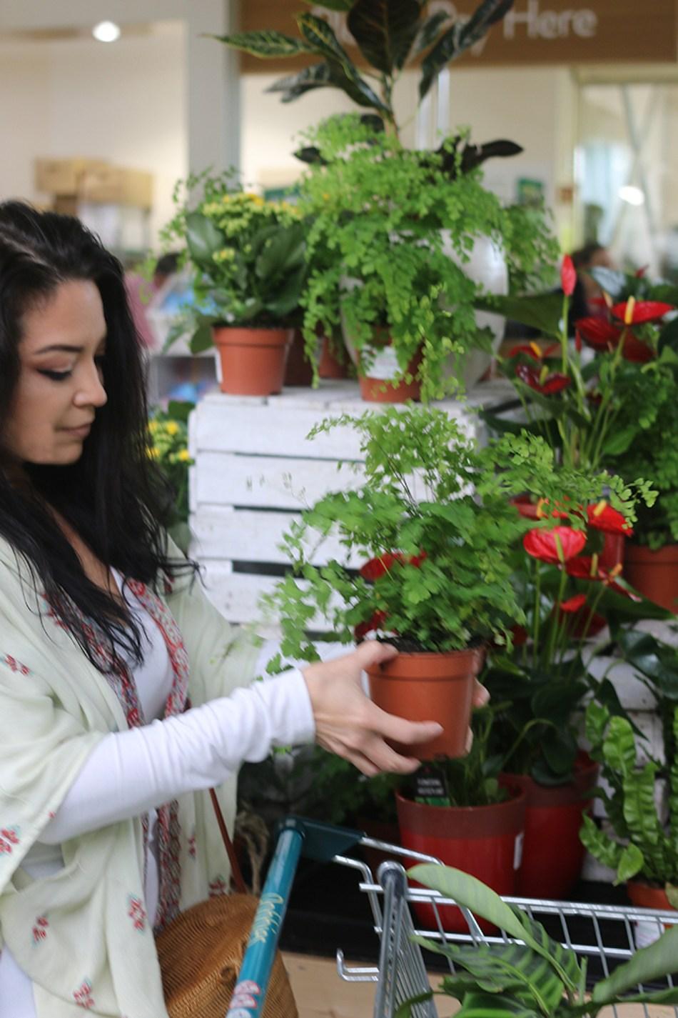 Femme qui se choisit une plante d'intérieur dans une pépinière.