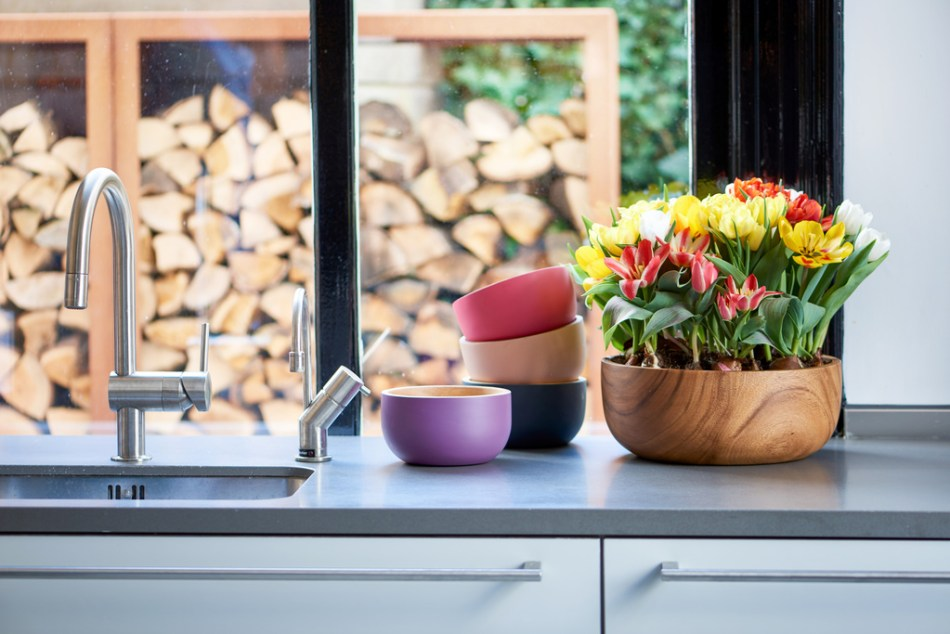 Pot de tulipes courtes de couleurs mélangées sur un comptoir de cuisine.