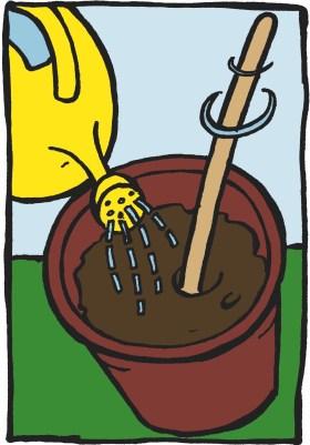 Illustration. Seau rempli de terreau, un arrosoir jaune y verse de l'eau, une cuilleur brasse la terre.