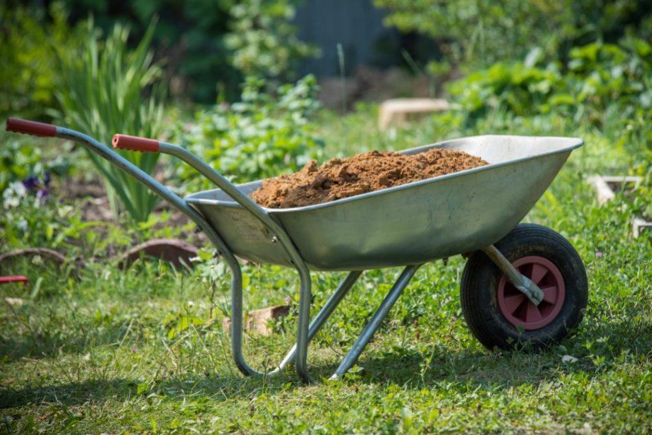 Brouette couleur argent dans un jardin, remplie de terre.