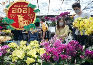 Des Hongkongais achetant des fleurs au marché pour l'Année du Buffle 2021. Médaillon Bonne année 2021 superposé.