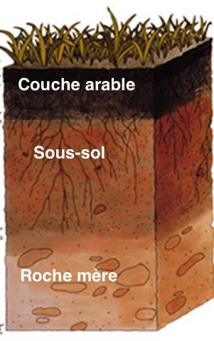 Trois couches de sol: couche arable, sous-sol, roche-mère