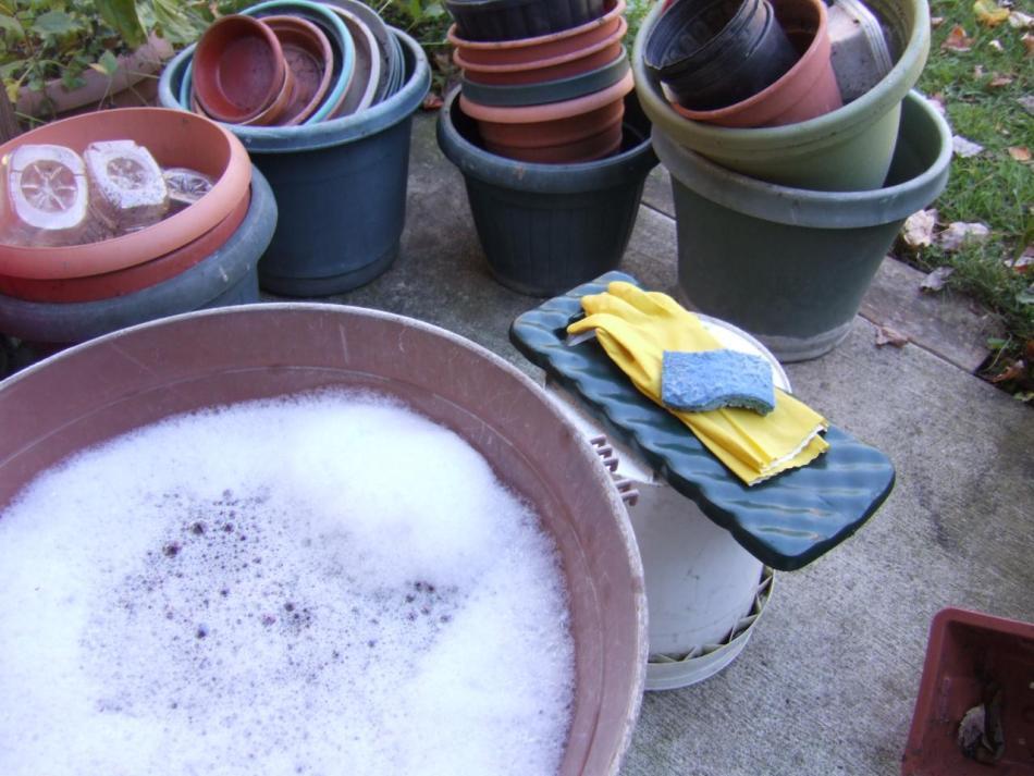 Lavage à la main de pots à fleurs.