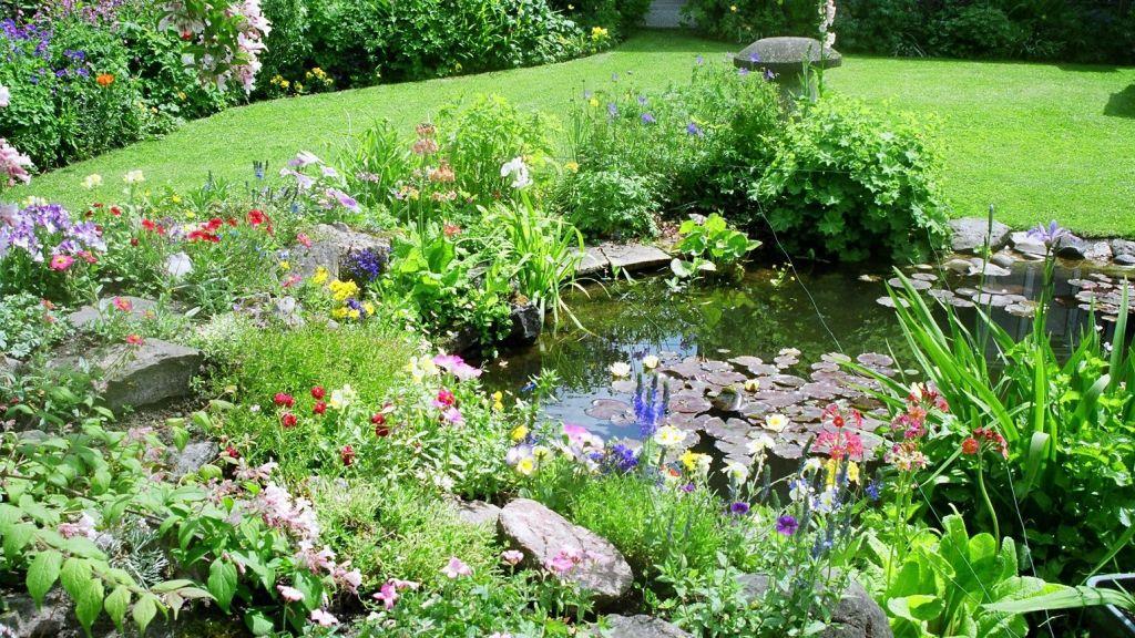 Jardin pour la faune avec étang