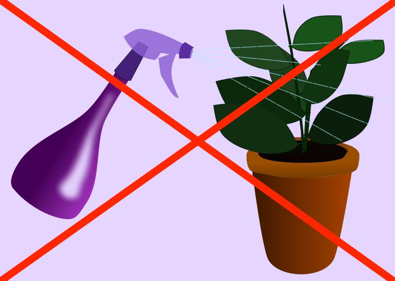 X rouge traversant une image montrant une plante d'intérieur vaporisée.