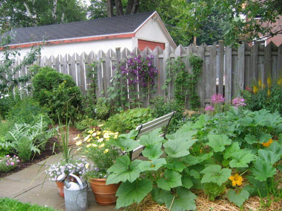 Potager nourri au compost.