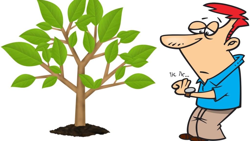 Homme qui s'impatiente quand son pommier produit pas de fruits.