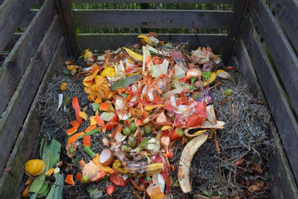 Bac à compost avec déchets de cuisine.