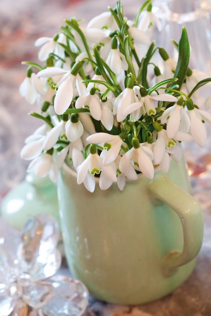 Bouquet de perce-neiges dans une tasse de café.