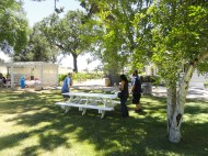 picnic table 2