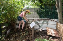 le jardin partagé de la Plage Arrière, Bagnolet
