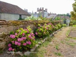 20120803 - Yonne - Clamecy - murs fleuris