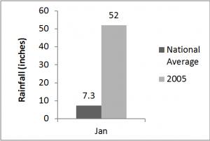 Figure 1: Rainfall Pattern in Georgetown January, 2005