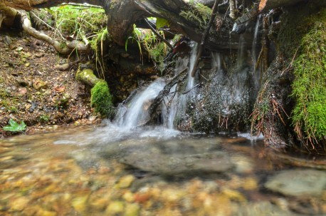 Small waterfall at Big Buffalo Creek Fen.