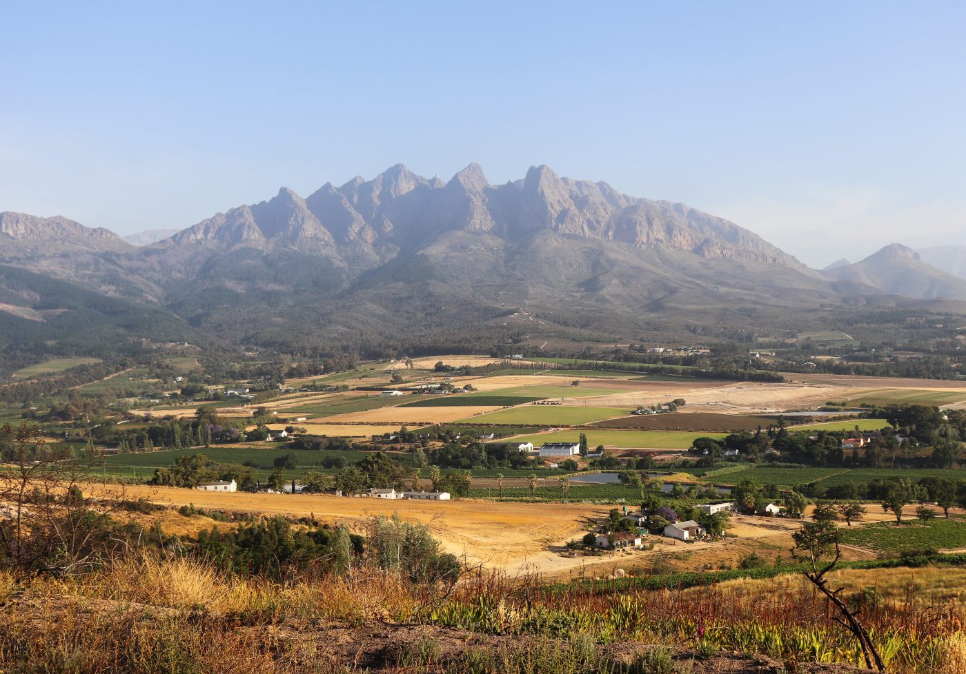 A Paarl Winelands Experience