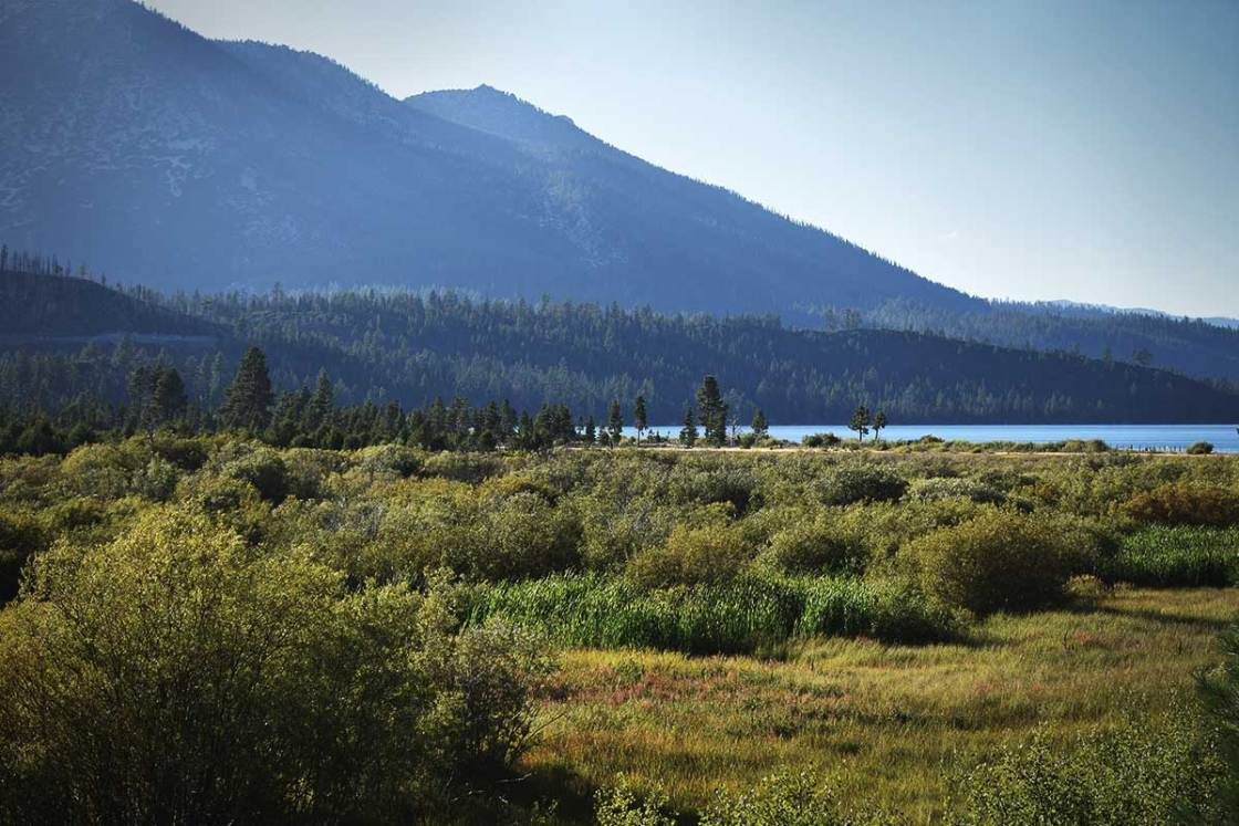 Mountains, a meadow, and Lake Tahoe