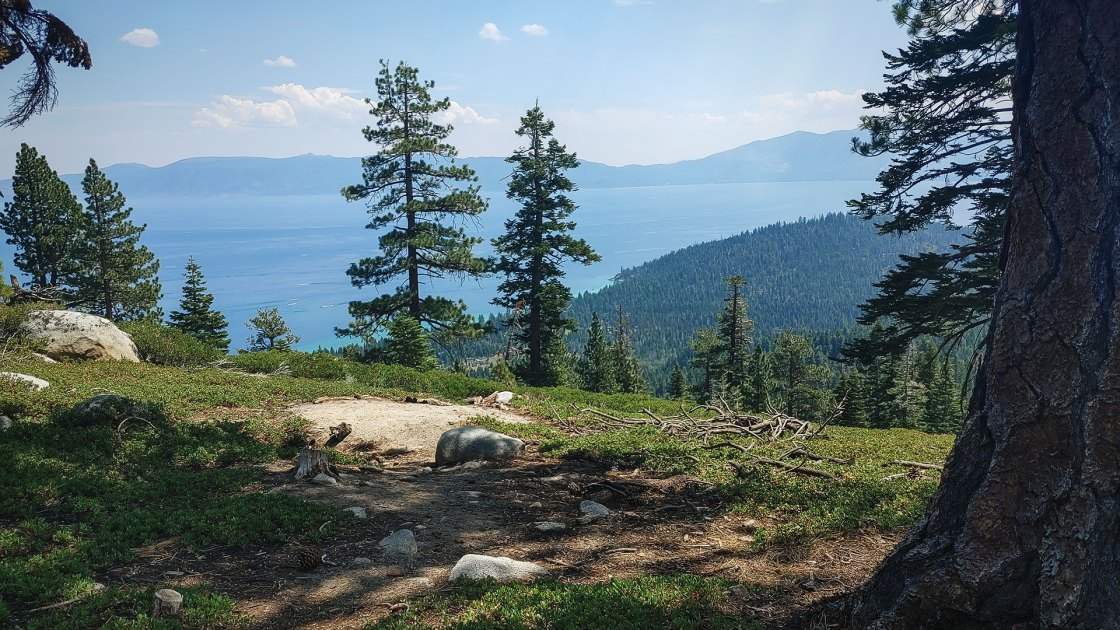 Lake Tahoe with trees and mountains