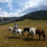 Melanie riding across the Southern Absarokas, Wyo.