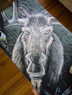 moose chalk