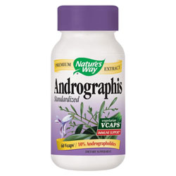 andrographis paniculata supplement for common cold and flu