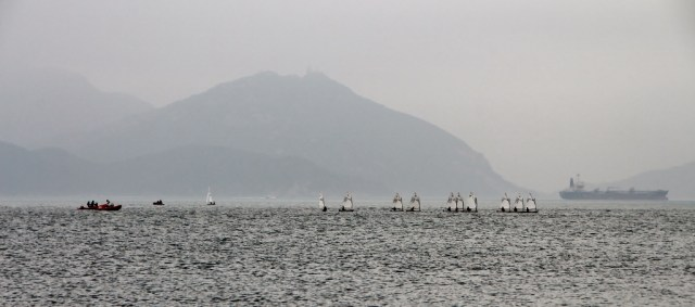 A regatta in front of Middle Island