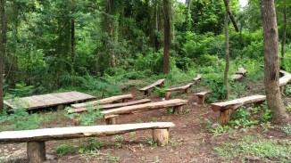 wanagama-edu-forest-009