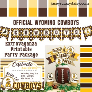 Wyoming Cowboys Party Package