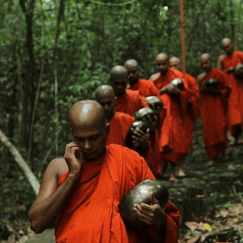 Sri Lanka With Jasmine Trails