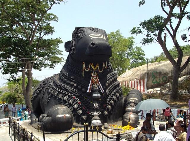 The heart of the Deccan Mysore nandi