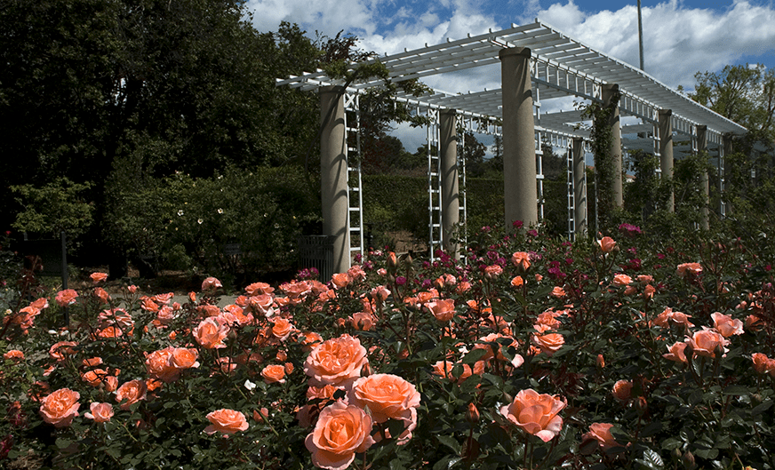 Register Now for the June 1 Event at Huntington Library