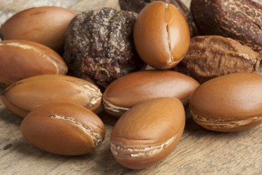 TSDS108323-argan-nuts