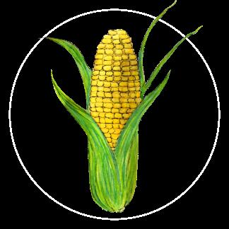 attribute-motif-corn-white