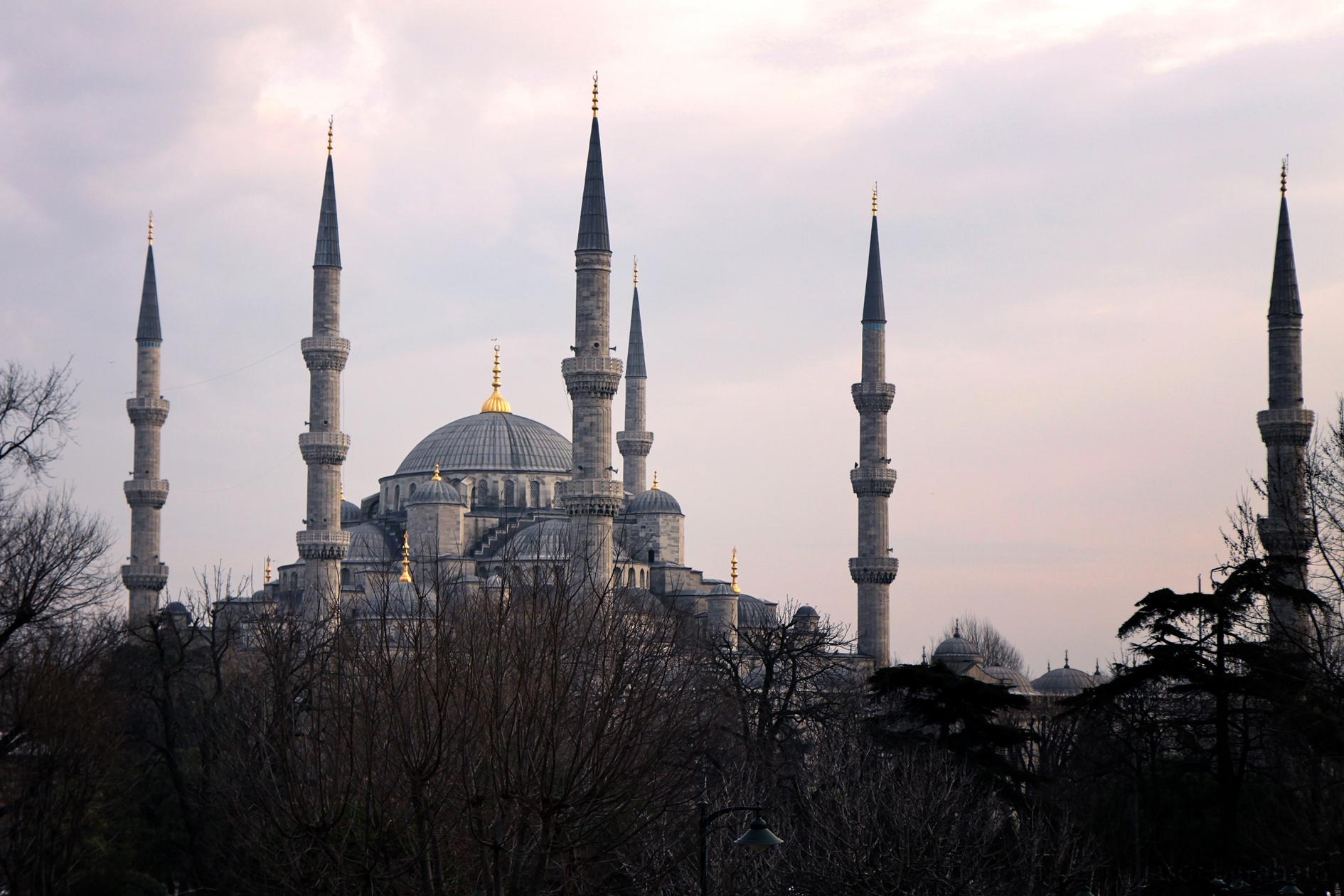blue-mosque-8428
