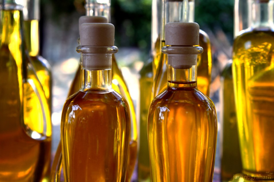 olive-oil-0869