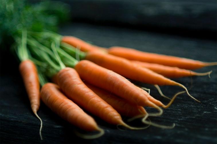 jason-b-graham-carrot-havuc-0006