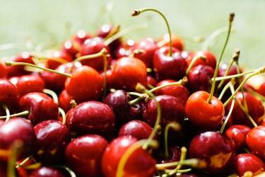 jason-b-graham-cherries-kiraz-0005