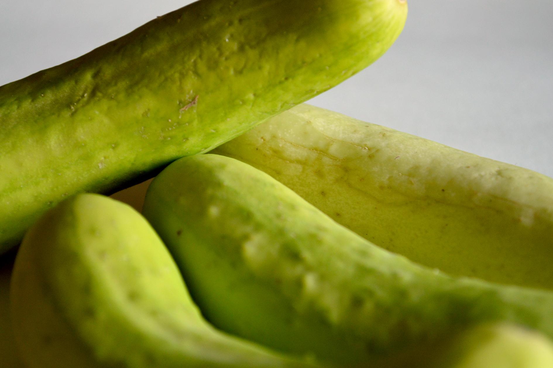 jason-b-graham-cucumber-salatalik-0003