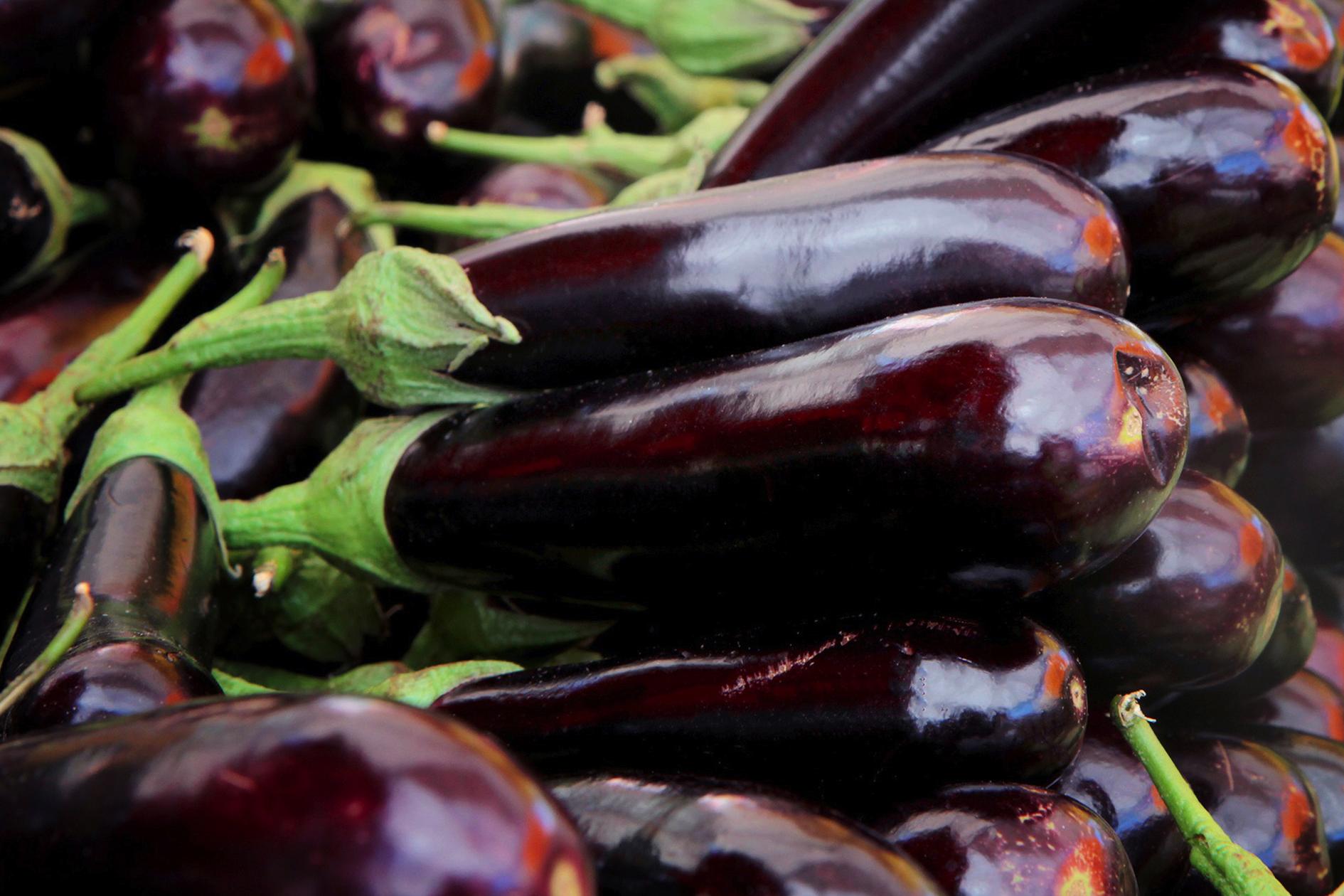 jason-b-graham-eggplant-0002
