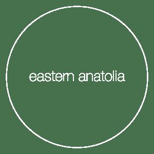 attribute-cuisine-eastern-anatolia