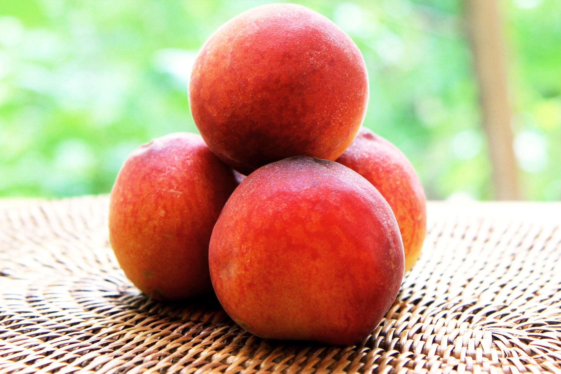 peach-parfait-peaches