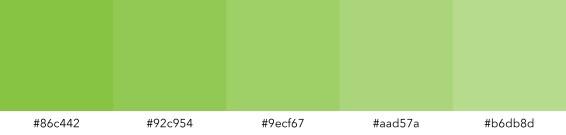 kleentech-color-palette-green