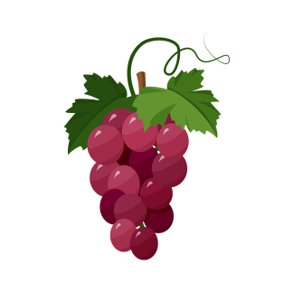 grapes-icon