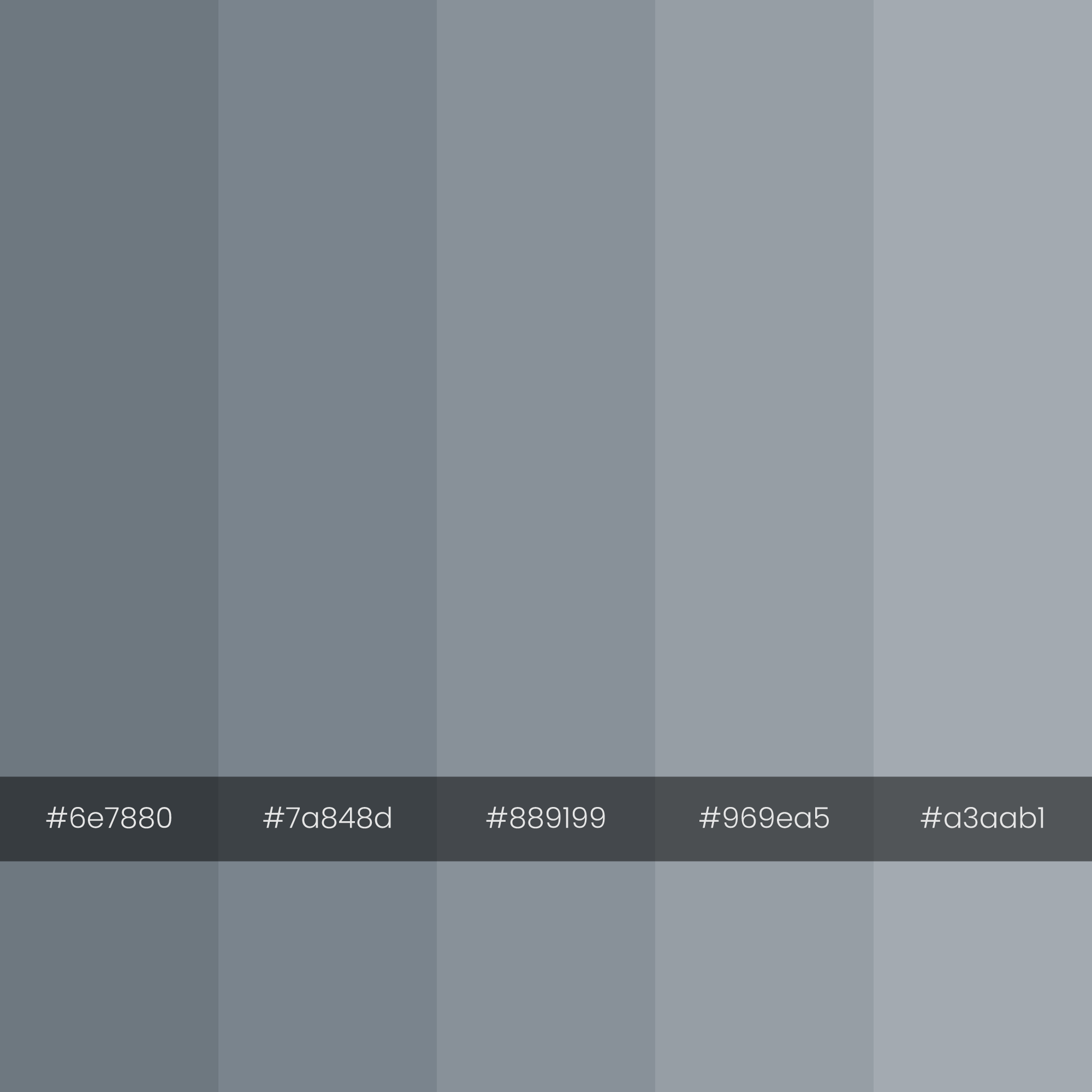 color-palette-2000-2000-bims-monochrome