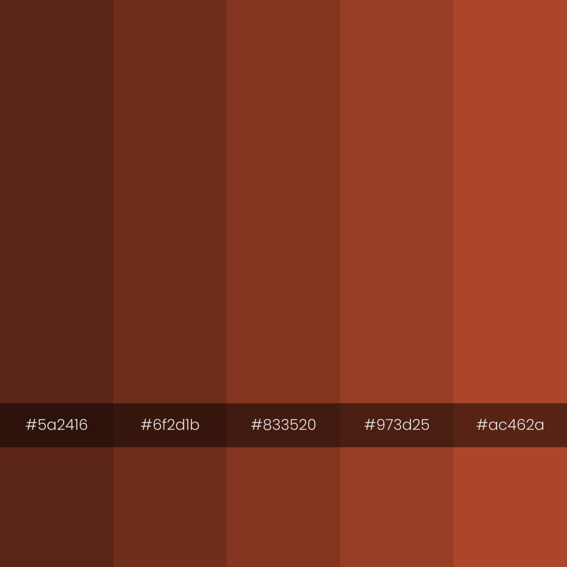 color-palette-2000-2000-troglodyte-monochrome
