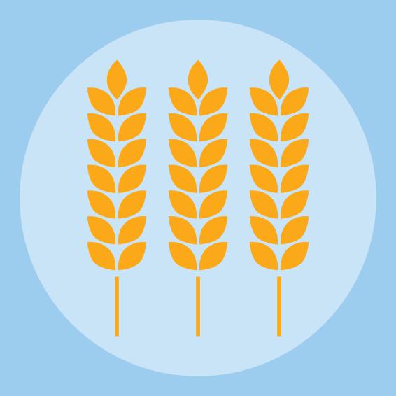 jason-b-graham-wheat-cae3f6