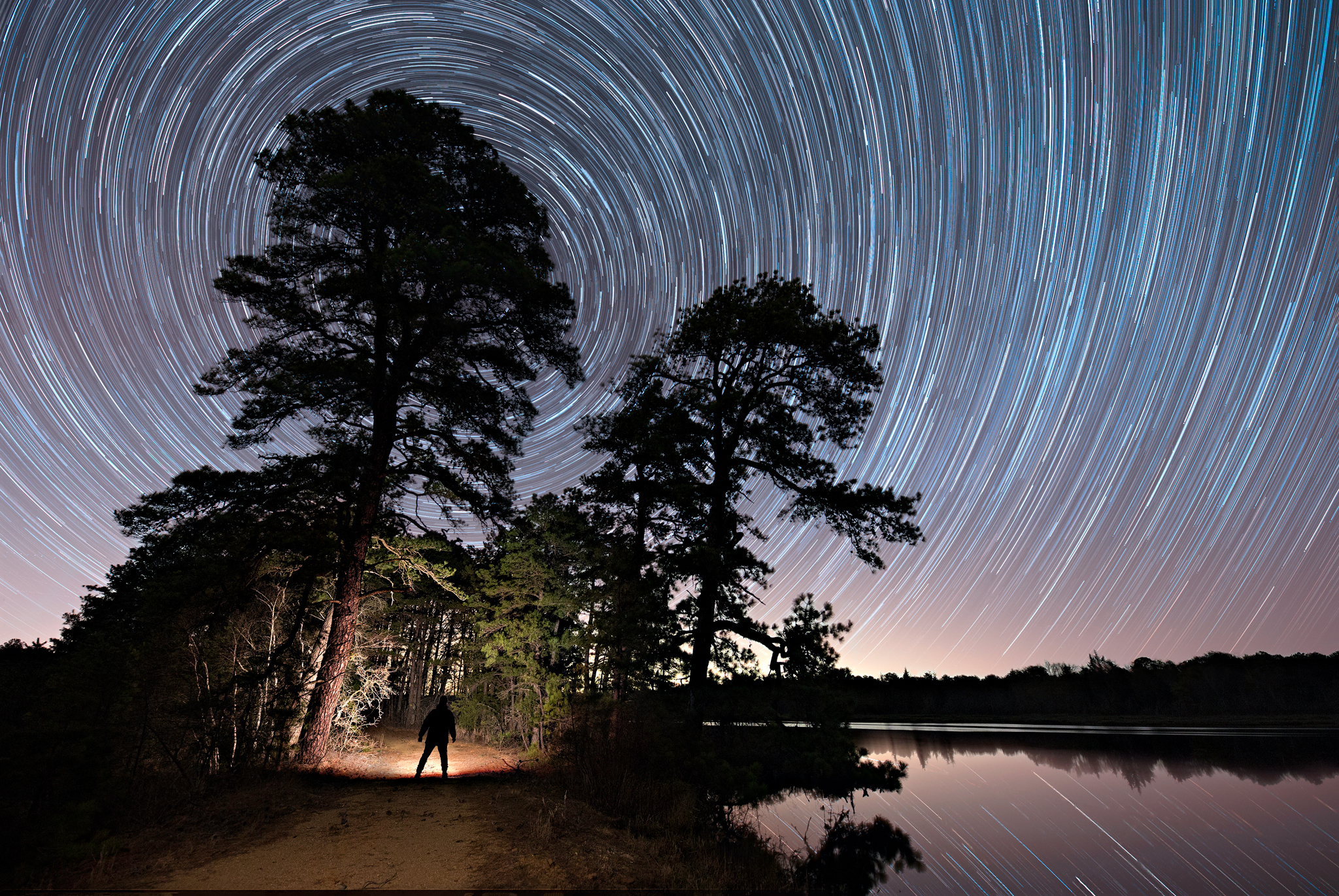 Star trails, facing the North sky in Franklin Parker Preserve, New Jersey
