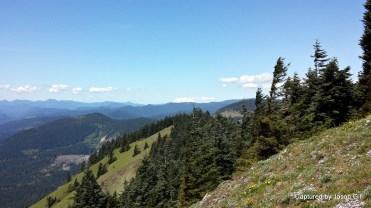 Dog Mountain Views (9)