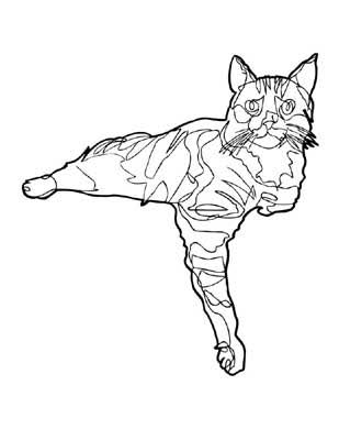jason-oliva-cat-coloring-book